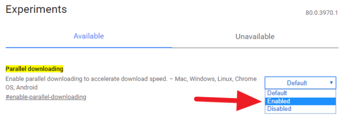parallel downloading aktif 6 Cara Mempercepat Download di Chrome PC Hingga 35% 3 parallel downloading aktif
