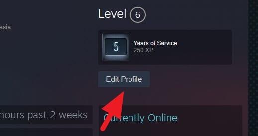 Edit profile Cara Mengganti ID Steam dengan Mudah 3 Edit profile